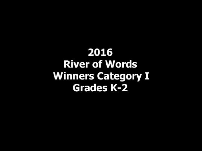 2016 row winners