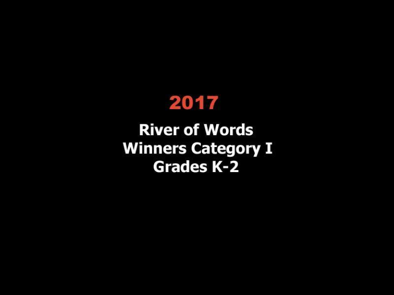 2017 row winners